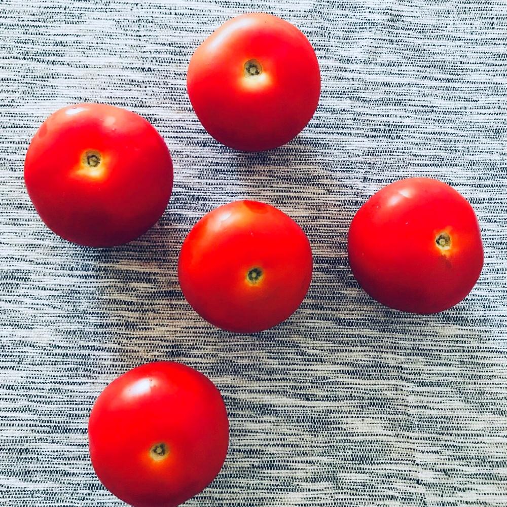 Zuch tomato